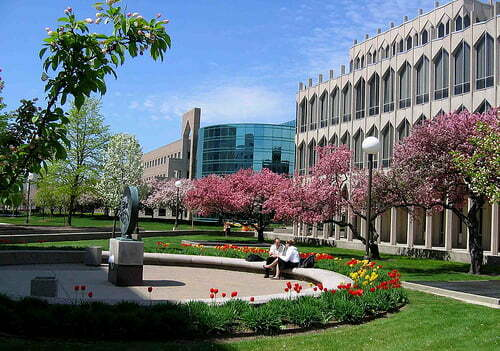 Best private colleges in michigan